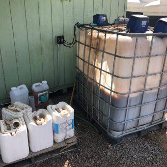 Kinney Compost Tea1